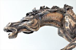 Torso koně | Torso Of a Horse