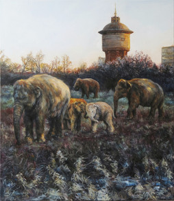Sloni u Kotěry   Elephants At Kotěra