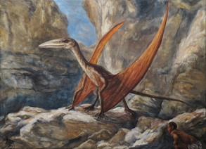 Supodrak / Vulture-dragon