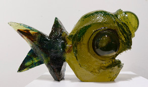 Zvědavá rybka | Curious Fish