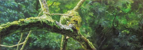 Větev / Branch
