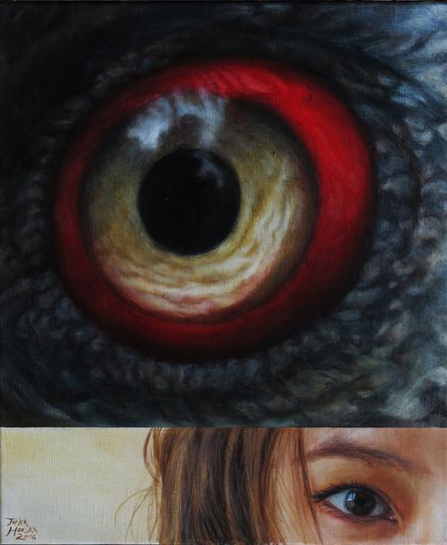 Orlosup / Vulture
