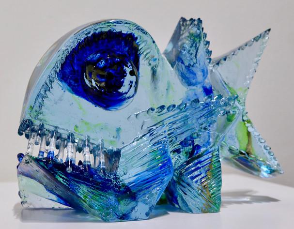 Modrá rybka | Blue Fish