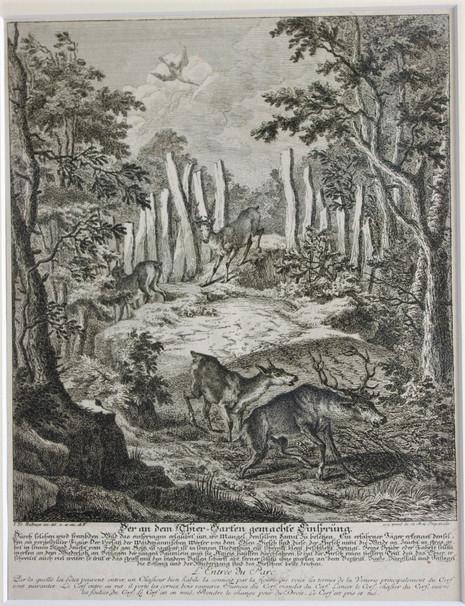 Johann Elias Ridinger - rytina