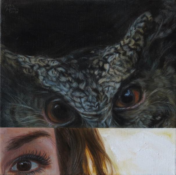 Výreček filipínský / Philippine Scops Owl