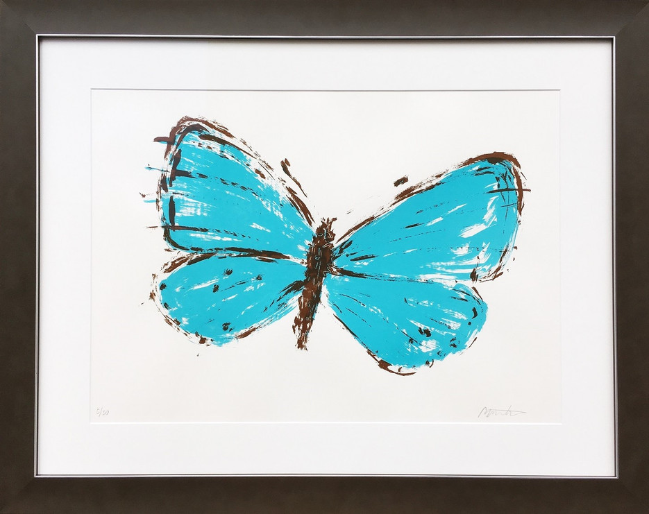 Motýl | Butterfly
