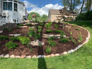 New softscape planting