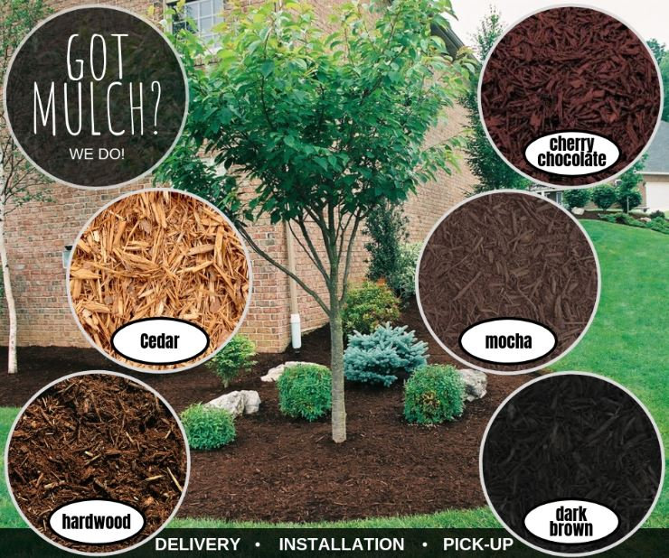 Mulch Poster Updated.JPG
