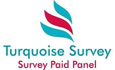 Survey paid cash make money,mysurvey