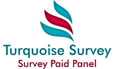 Survey paid cash make money,mysurvey