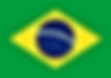 Brazil Paid Surveys