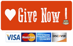 Give Now button 1.14.20 PM.png