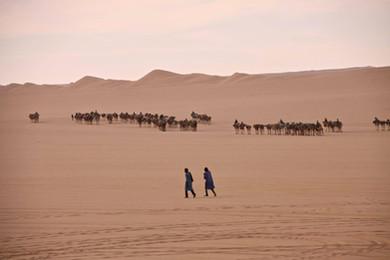 caravane desert niger .JPG