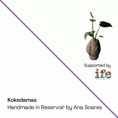 Kokedama - Medium