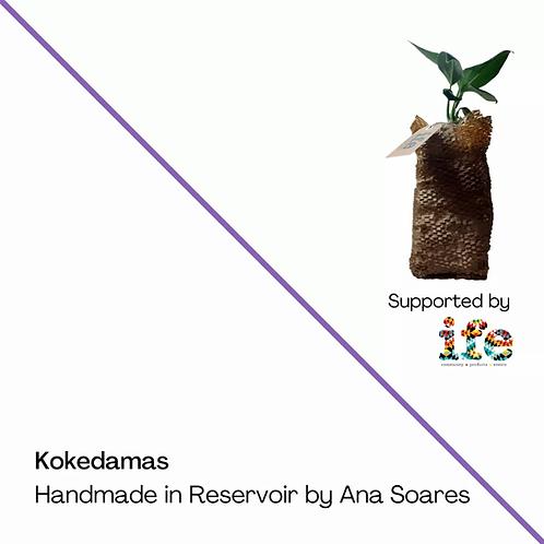 Kokedama - Large