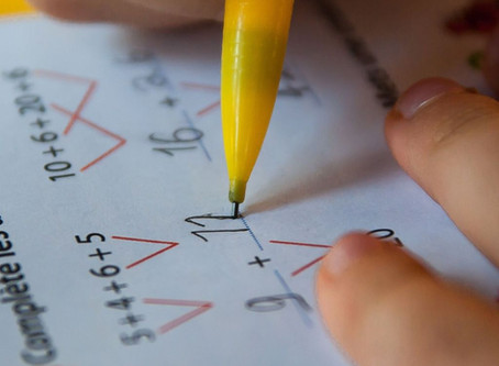 Tutoring Changes the Physical Structure of the Brain!