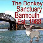Barmouth Donkeys