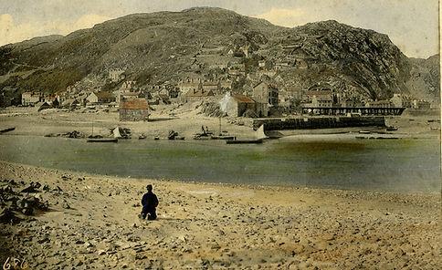 Barmouth from Ynys y Brawd 1880