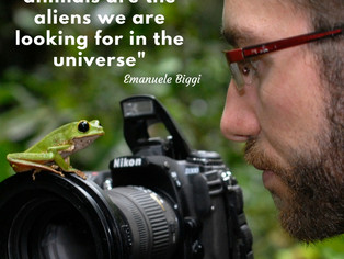 Emanuele Biggi-Amphibians, Aliens and Heavy Metal