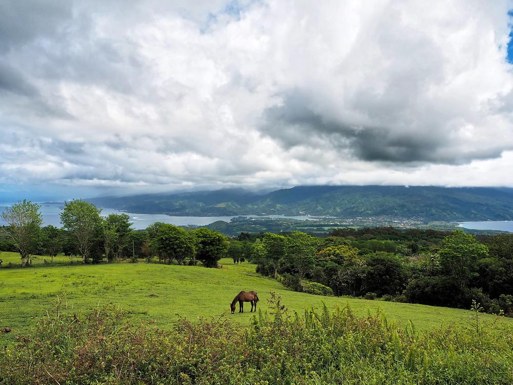 Plateau de Taravao