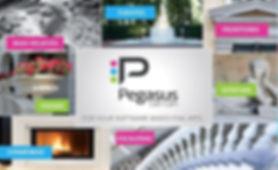 pegasus-stone-software-based-fine-arts.j