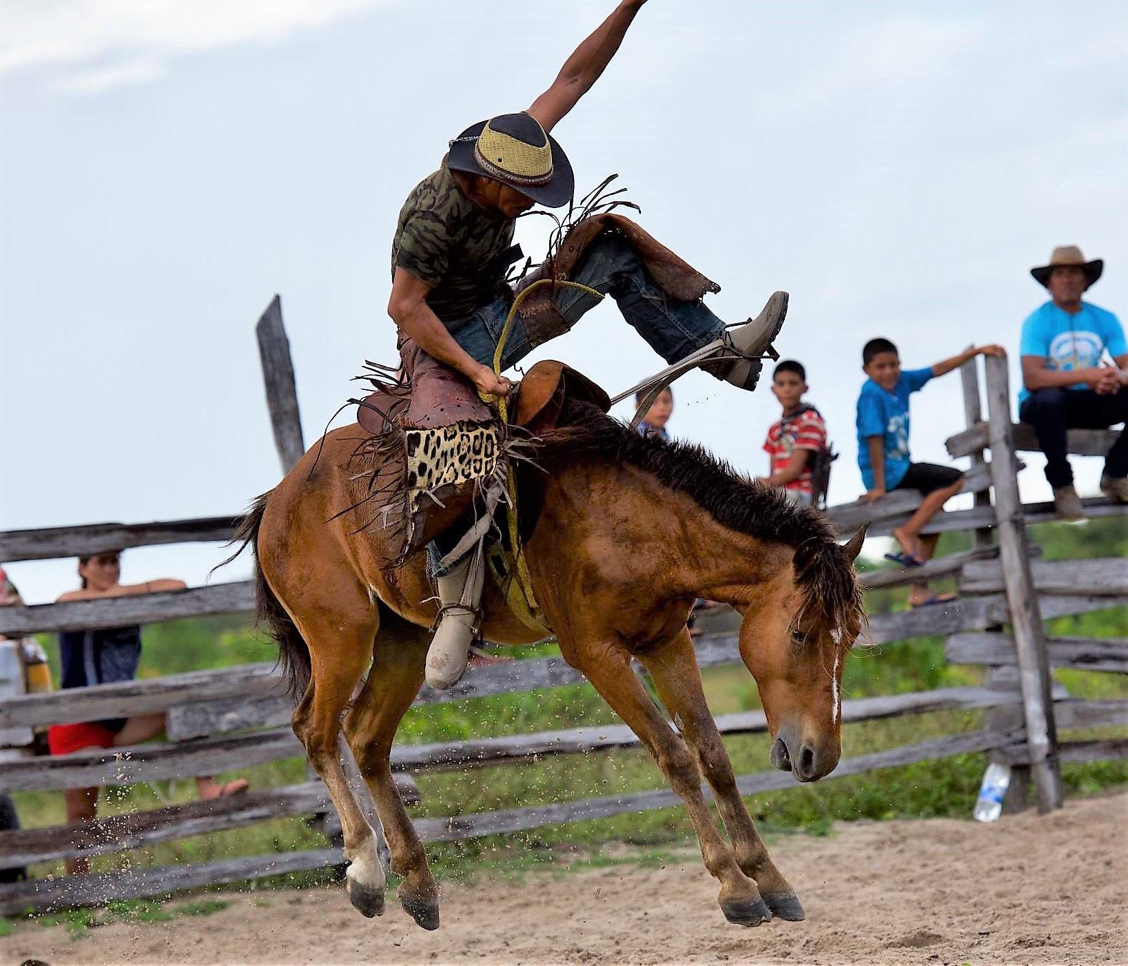 A celebratory mini rodeo