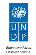 undp logo(transparent).png