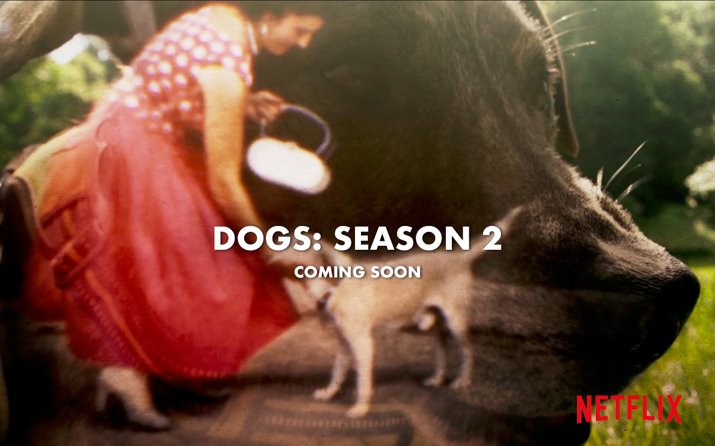 DOGS: SEASON 2