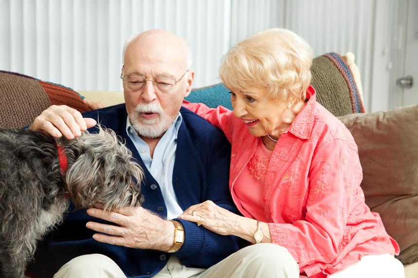 senior couple - dog lovers.jpg