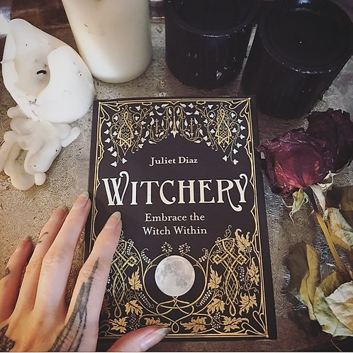 Witchery by Juliet Diaz ~ Softcover Book ~New