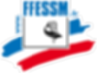 logo-ffessm.png