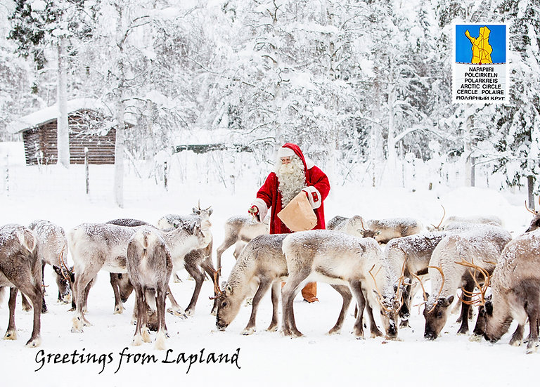 Joulupukin porotokka | Santa's herd