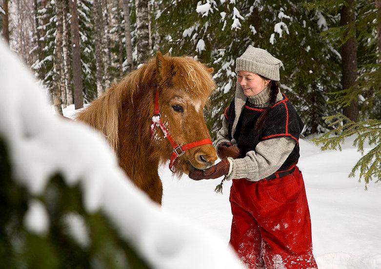Tonttu ja heppa | Elf and horse