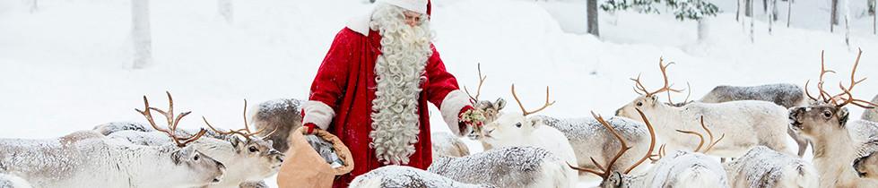 Joulupukin porotokka valokuva arkistokuva Kaisa Sirén