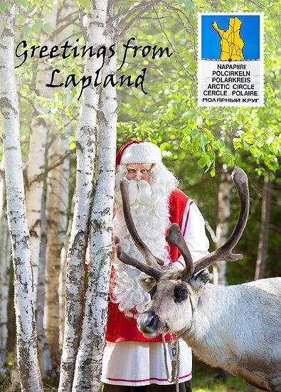 Pukki & poro koivikossa | Santa, Rudolf & birches
