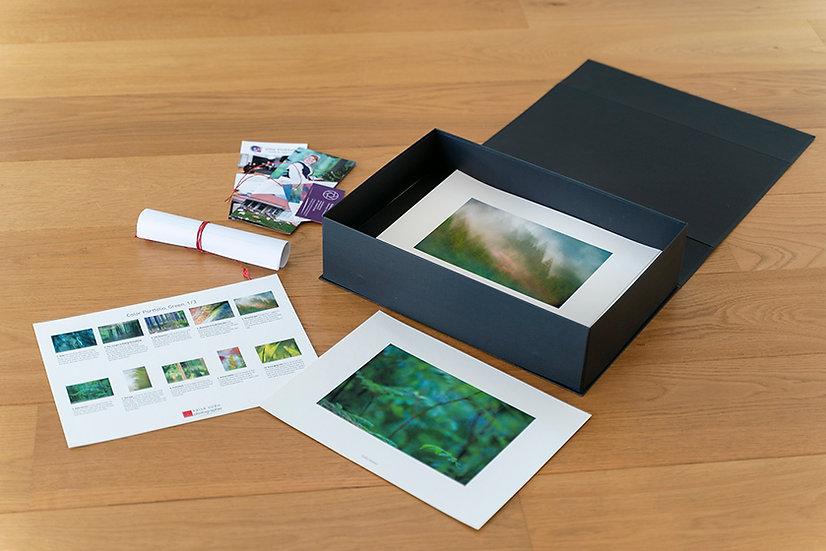 Portfoliolaatikko Vihreä