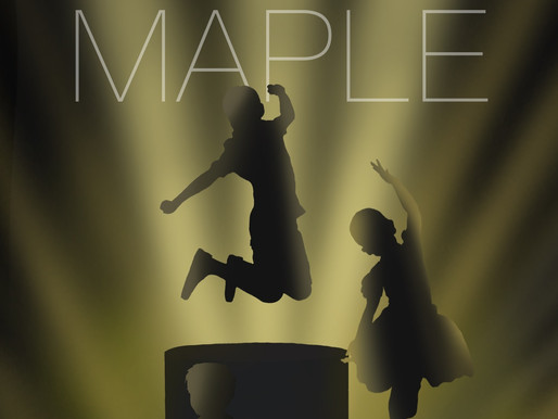 The First Maple International Children's Animation Film Festival