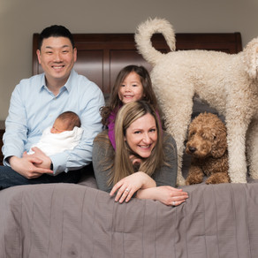 Family sessions are a well dressed play date!