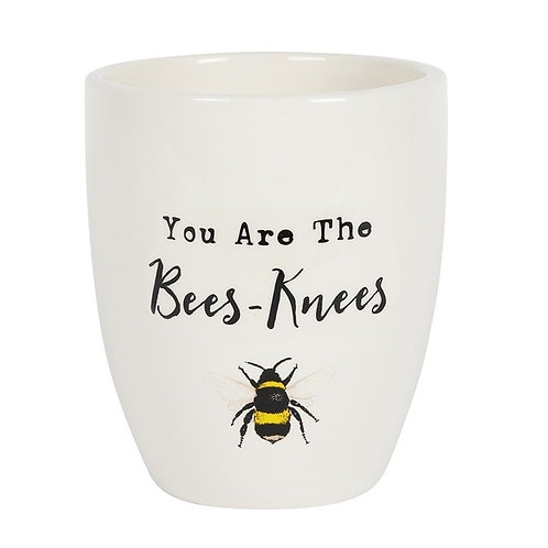You Are The Bees Knees Ceramic Plant Pot