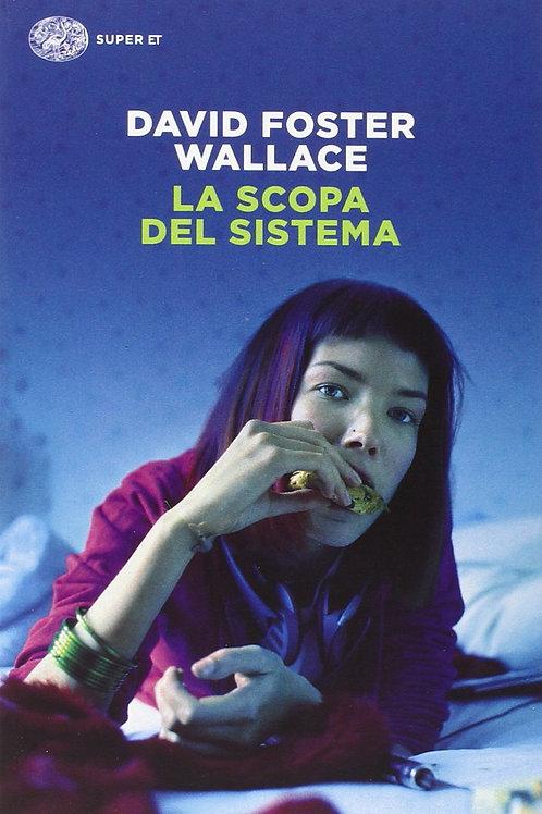La scopa del sistema di David Foster Wallace