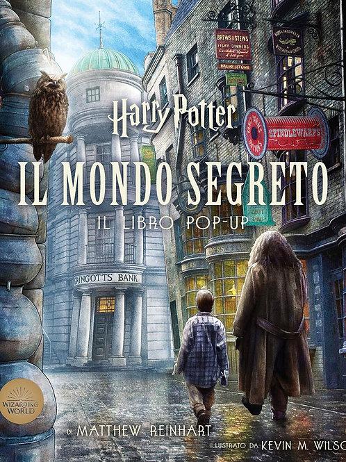 Harry Potter Il mondo segreto libro pop-up