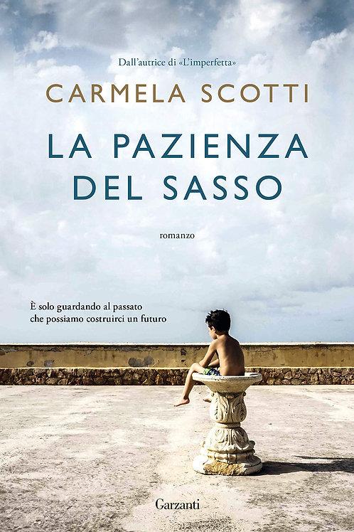 La pazienza del sasso di Carmela Scotti