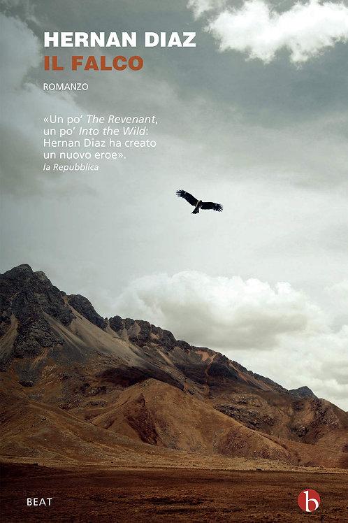 Il falco di Diaz Hernan