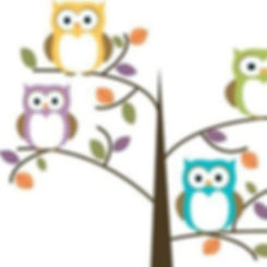 OWLS senior adults.jpg