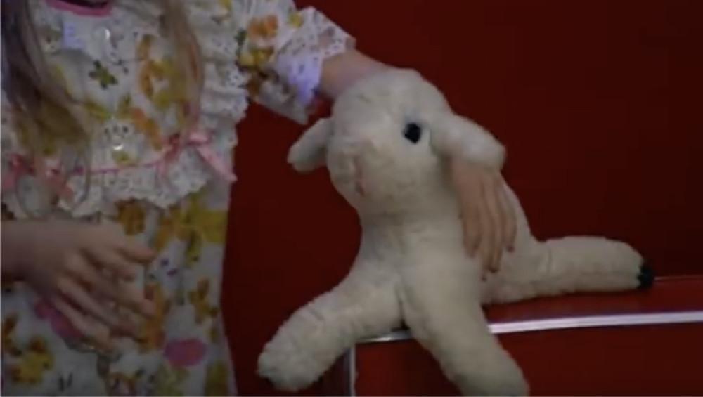 Fig.14:  cutaway shot of a girl grabs a sheep doll  ©Youtube