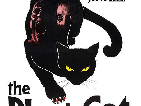 Film Review:  The Black Cat (1981) - Lucio Fulci's Film Editing Analysis #1