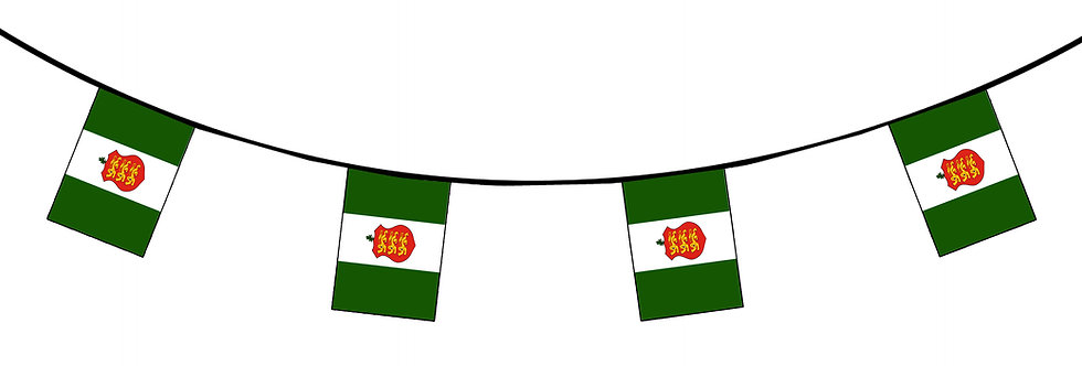 Guernsey Old Green Sports Flag Bunting Fabric 10 meter 20 flags