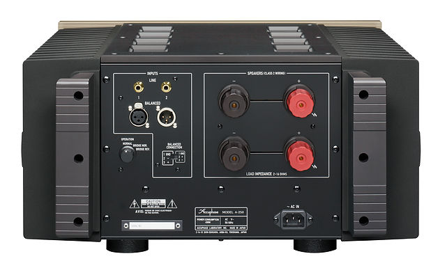 a-250_back.jpg