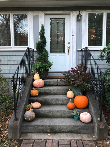 Front Steps with Ornamental Pumpkins, Juniper Topiary and Kale, and Potted Spirea