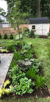 Mixed perennial garden bed